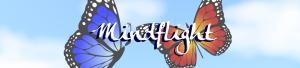 mindflight-main-banner-promo