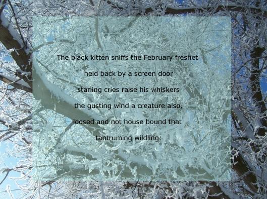 winter poem.JPG